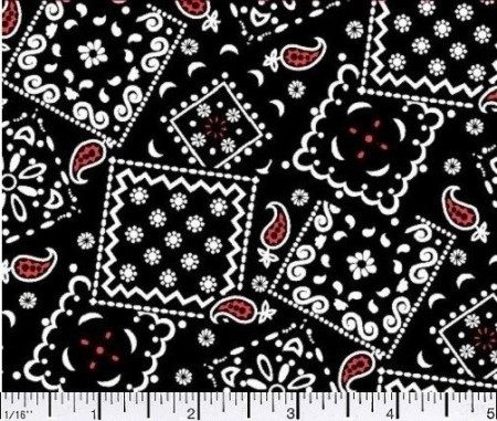 05 Blazin Bandana Black Red