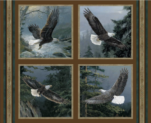 All He Surveys Eagle Pillow Panel