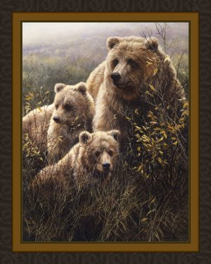 Denali Family Grizzly Bears