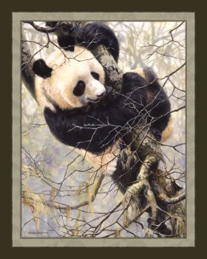 Panda Trilogy - Panda in Tree